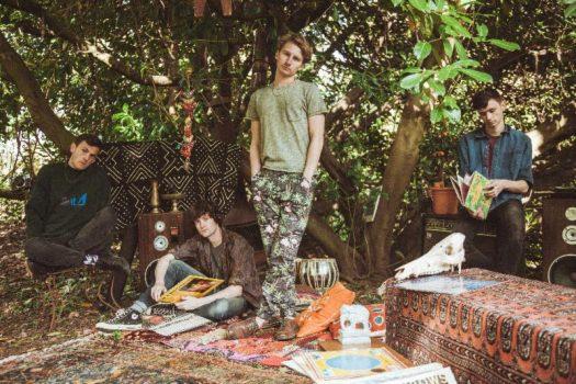 Glass Animals Stream Debut LP