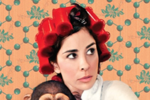 "Available Now: Sarah Silverman's Emmy-Winning ""We Are Miracles"""