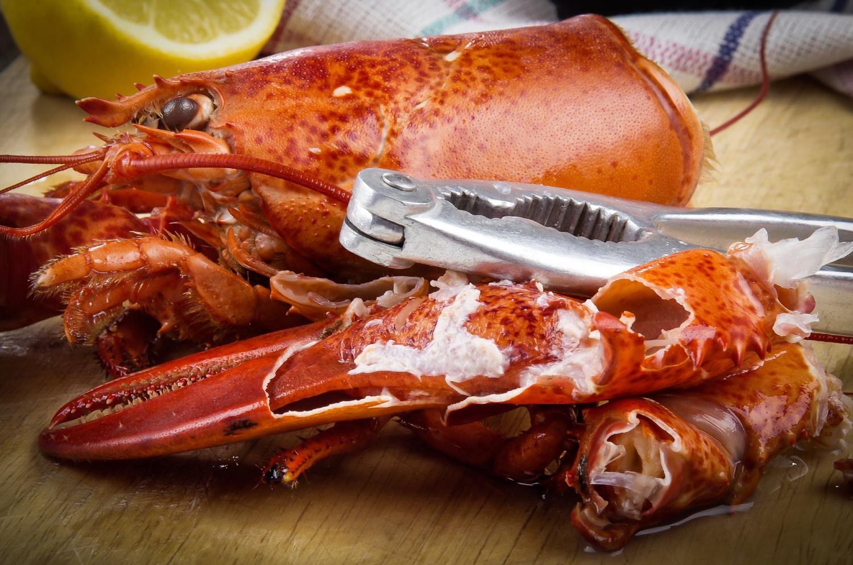 village-prime-lobster-grungecake-thumbnail