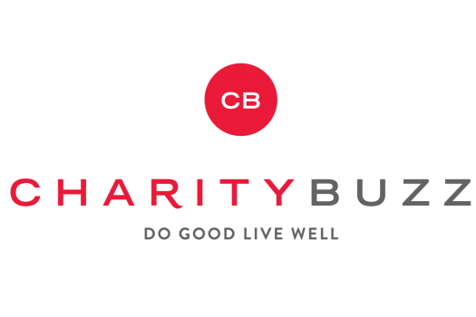 Charitybuzz: What is it?