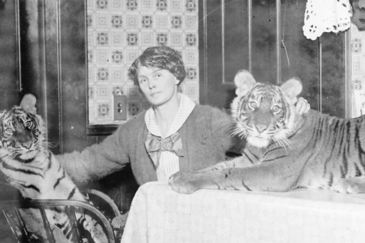 Review: 'Mabel, Mabel, Tiger Trainer' tells the story of a female tiger trainer's 60-year career